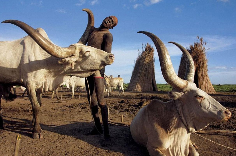 Пастух из суданского племени Динка